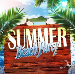 dj beach party at salisbury beach photo